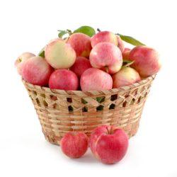 Saft aus eigenen Früchten