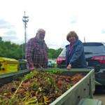 Silke und Wolfgang L. bringen Grünabfälle zum Recyclinghof Sasel