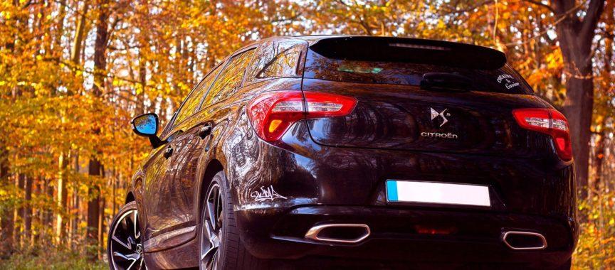 Auto von hinten steht im Herbst-Wald