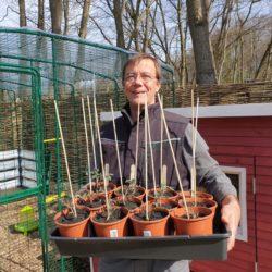 Homefarming Axel Bauermann aus Volksdorf
