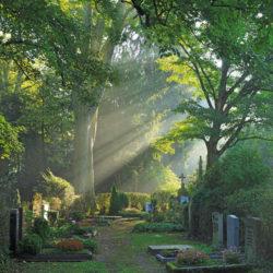 Friedhofsbild für Zeit des Abschieds