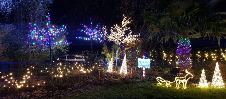 Beleuchteter Garten zu Weihnachten
