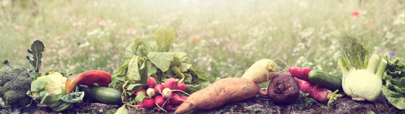 Bio-Gemüse