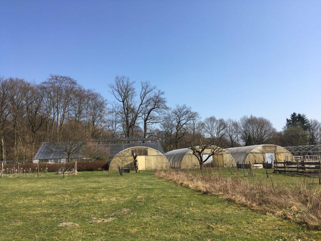 Das Grüne Kollektiv in Volksdorf