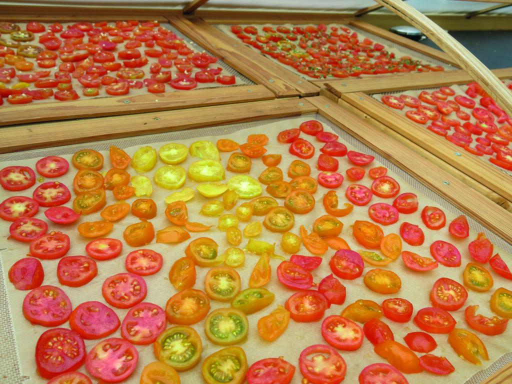 Tomaten trocknen auf Gitter