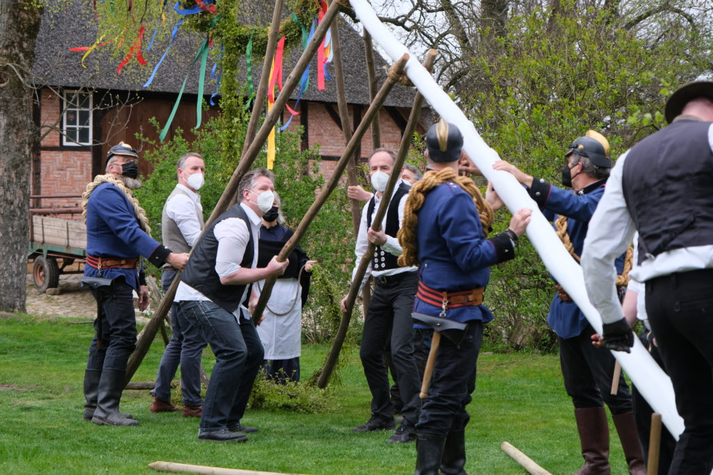 Männer stellen den Maibaum im Museumsdorf Volksdorf auf