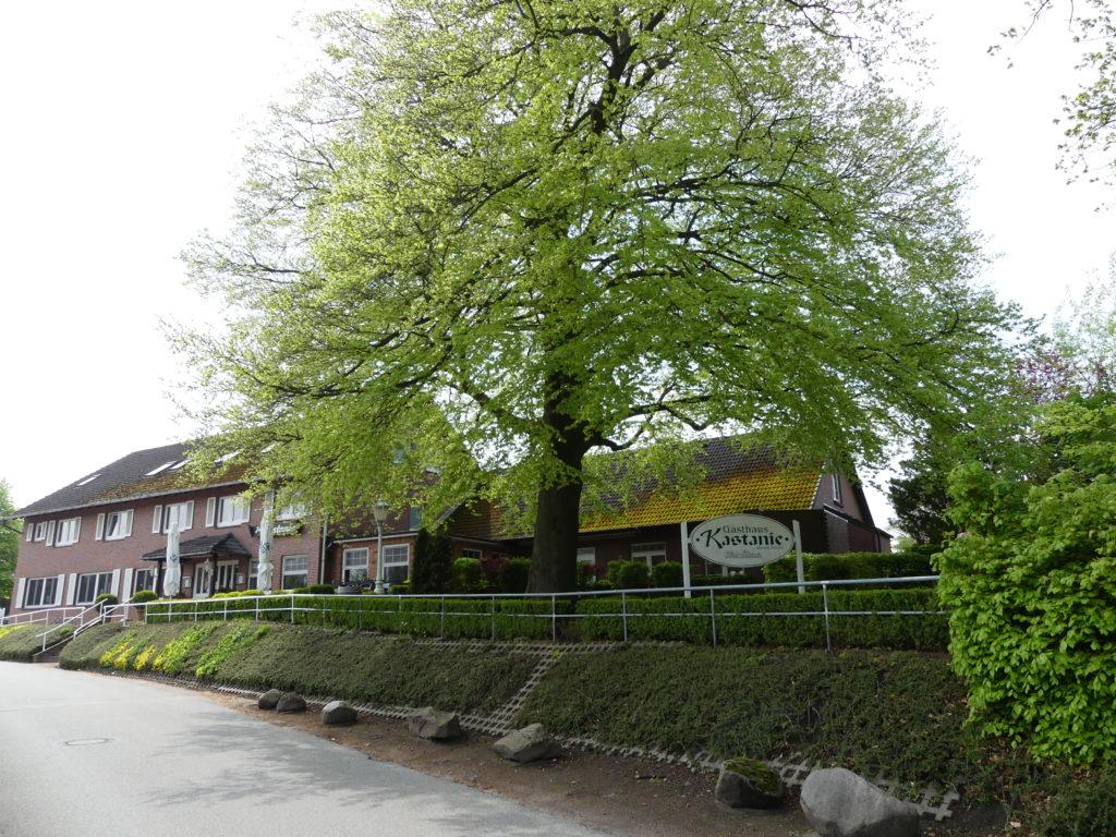 Restaurant Zur Kastanie, Duvenstedt erleben