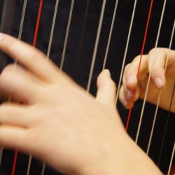 Chansons d'amour - Liebeslieder für Sopran und Harfe