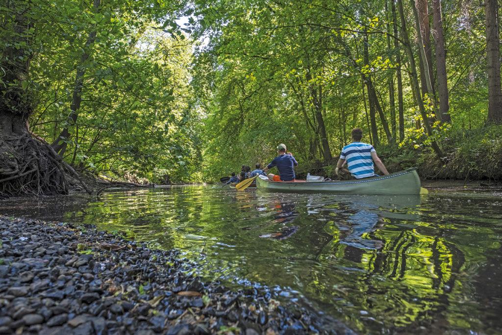 Kanu-fahren auf der Alster, Duvenstedt erleben