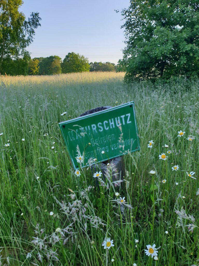 Die Biotope auf dem Golfplatz Treudelberg stehen unter Naturschutz