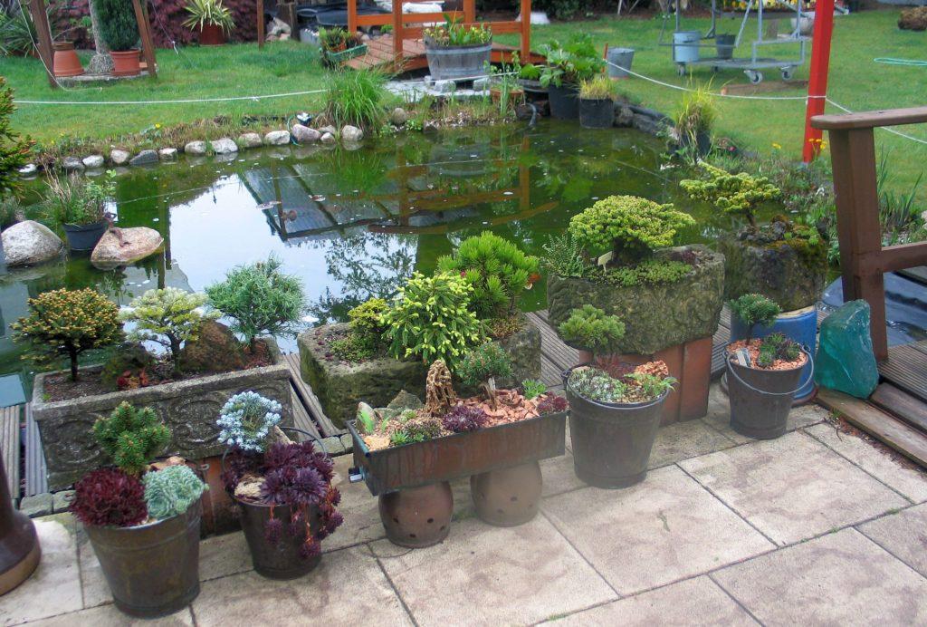 Garten mit Teich von Familie Gensch, Bramkoppel 8 in Sasel