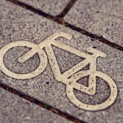 Kommunalpolitische Fahrradtour DIE LINKE Alstertal/Walddörfer
