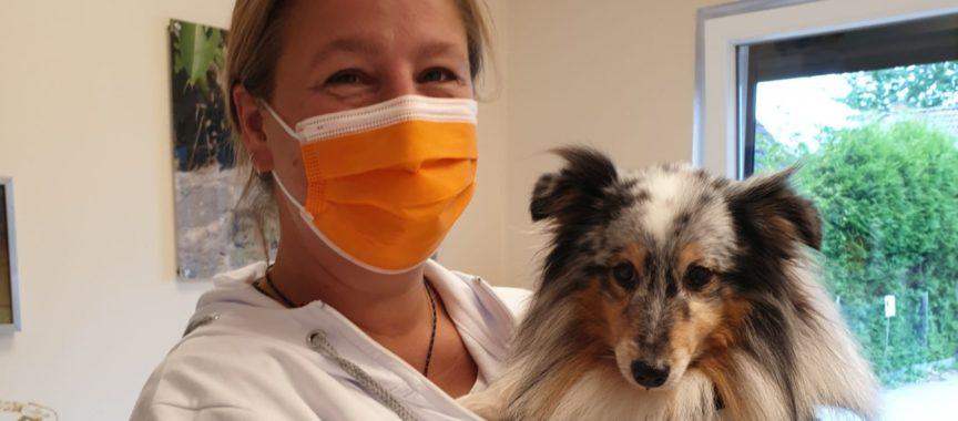 Tierärztin Meike Dankert mit Patient (2)