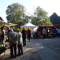 Bauern- und Pflanzenmarkt